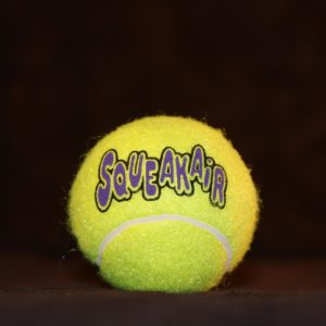 Squeaky Tennis Ball (Lg)-0