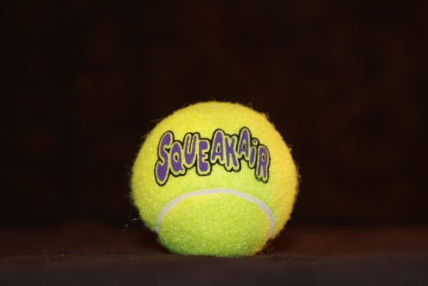 Squeaky Tennis Ball (Lg)-0