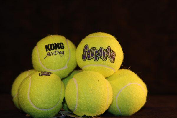 Squeaky Tennis Ball (Lg)-321