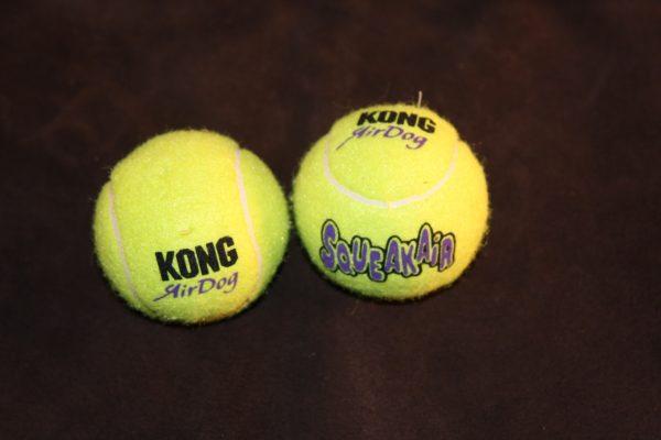 Squeaky Tennis Ball (Lg)-323
