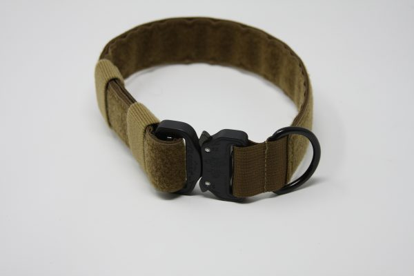 1.5'' Mil-Spec Nylon Id Collar w/plastic buckle-796
