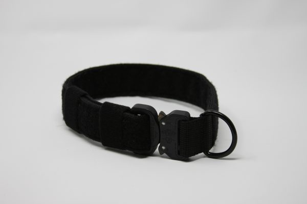 2'' Black Nylon Id Collar w/metal buckle-798